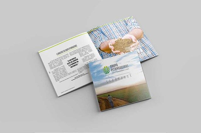 grupo pitangueiras storybook